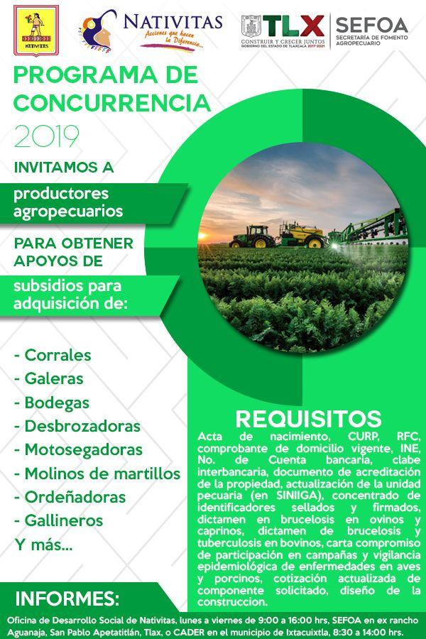 Participa en el Programa de Concurrencia 2019 y Obtén Apoyo de Subsidios