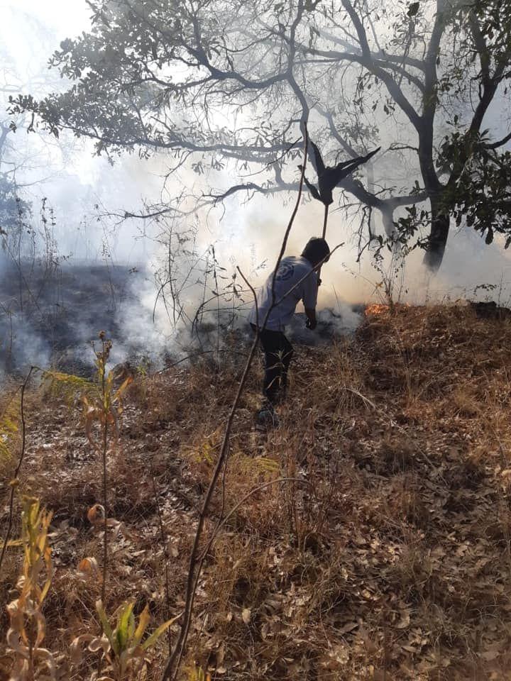 Protección Civil de Nativitas Sofoca Incendio en San Miguel del Milagro y Capula